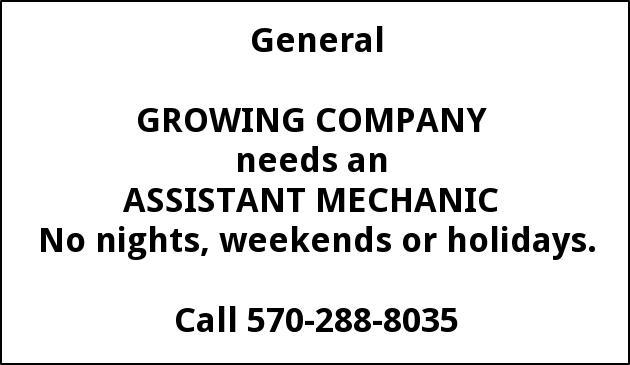 Assistant Mechanic
